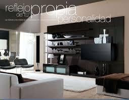 extraordinary decoration living room 2013 3046