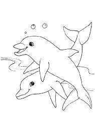 dessin pour enfant 2 jolis dauphins à colorier coloriages