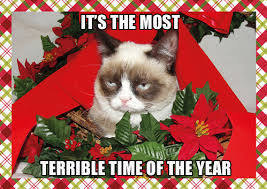 Grumpy Cat Hates the Holidays