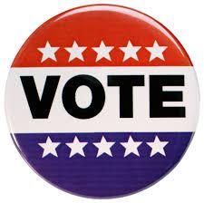 Image result for vote