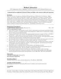 sales executive sample resume with profile and professional         design com   Professional Resume Template Services