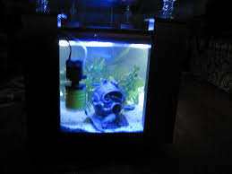table aquarium design oval loversiq