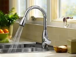 Oil Rubbed Kitchen Faucets Kitchen Exciting Pull Down Faucet For Your Kitchen Decor Ideas