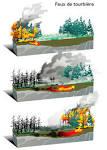 RN 8 – Incendies de forêt » Mémento du maire et des élus locaux