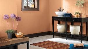 Bathrooms Color Ideas Bathroom Color Inspiration Gallery U2013 Sherwin Williams