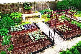 vegetable garden design plans layouts ideas kerala the