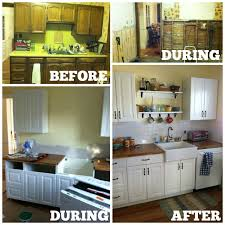 DIY Kitchen Cabinets IKEA Vs Home Depot House And Hammer - Cabinets ikea kitchen