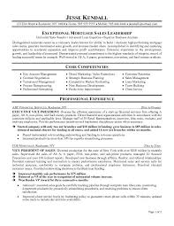 Sample Executive Resume Template   babysitting job description