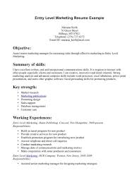 Example Job Resume by Resume Example Entry Level Simple Business Contract