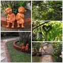 ปรับปรุงสวนข้างบ้าน - GotoKnow