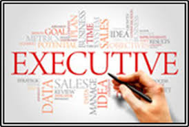 Professional Resume Writing Services Washington DC   Expert Resumes Expert Resumes excutive