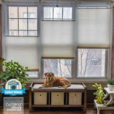 deluxe cordless top down bottom up cellular shades blindster com