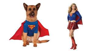 Supergirl Halloween Costume 10 Halloween Costumes Pets U0026 Owners Ensure Win