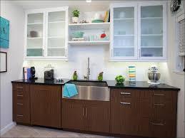 White Shaker Kitchen Cabinet Doors Kitchen Ikea Kitchen Cabinets New Cabinet Doors White Shaker