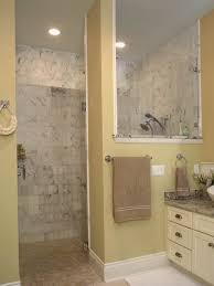 Bathroom Shower Remodel Ideas by Houzz Small Bathroom Remodel Bathroom Decor