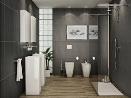 Spa Bathroom Design Ideas Bathroom Small Bathroom Interior Design Designs For Bathrooms