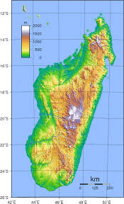 Physical Map Of South America by South America Satellite Image Giclee Print Topography Bathymetry