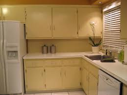 Restaining Kitchen Cabinets Kitchen Prefab Kitchen Cabinets Within Flawless Premade Kitchen