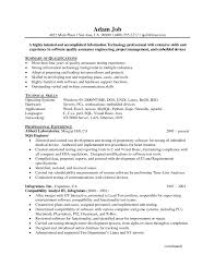 Sample Resume Templates For It Professionals   Resume Sample