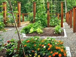 garden ideas stunning raised garden bed ideas low maintenance