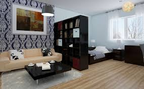 amazing studio apartments layouts with black television and