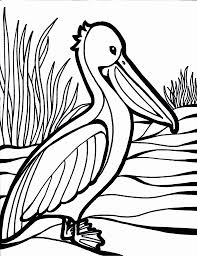 coloring pages of birds olegandreev me