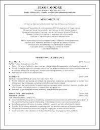 Customer Service Experience Resume Sample Of Experience Resume Resume For Your Job Application