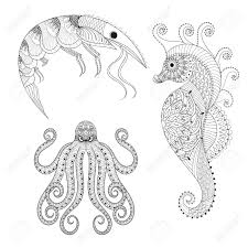 hand drawn shrimp sea horse octopus for anti stress