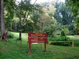 Hugg-Thomas Wildlife Management Area