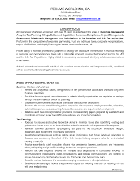 Retail Professional Summary Resume Examples Resume Examples Profile And Personal Details