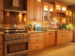 Kitchen Cabinets Springfield Mo Fresh High End Kitchen Cabinets Home And Furniture Design Idea