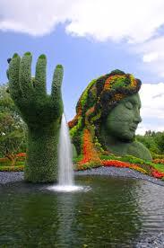 Brisbane City Botanic Gardens by 25 Best City Botanic Gardens Ideas On Pinterest Nyc Botanical