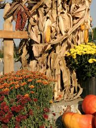 decorating the porch for fall graceful order idolza