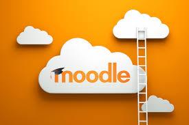 Звіт Moodle