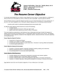 Executive Summary Resume Example Template Executive Summary Resume Writing A Resume Summary Of