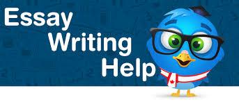 Canadian custom essays   Ict ocr coursework help  Custom Essays  Freelance essay writers   Professional Writing Freelance essay writers