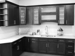 cool kitchen ideas with black cabinets 4747 baytownkitchen