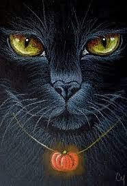top 25 best black cat drawing ideas on pinterest black cat