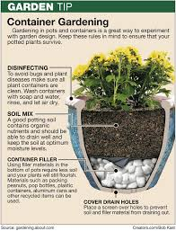 383 best plant warrior images on pinterest gardening