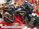 modified pulsar 150