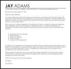 resume template junior architect resume objective software related     General Contractor Cover Letter Example
