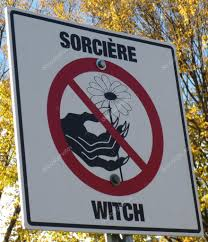 road or park sign for halloween saying that witch are not alowed