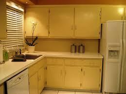 laminate kitchen cabinets exotic hues decoration u0026 furniture