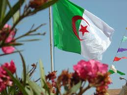 الجزائري شلالي يؤكد مشاركته في البطولة الإفريقية المؤهلة لأولمبياد لندن Images?q=tbn:ANd9GcTWBendUSrzINxolxFxnYWwNsGoJsrMBG9z1DB1mRhdmZei1zwuUGeU8JEp