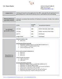 Resume Template   Free Job Profile Examples Software Developer     Softonic