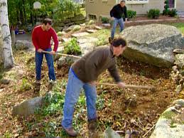 Rock Garden Plants Uk by How To Make A Rock Garden How Tos Diy