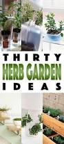 garden ideas wonderful herb garden ideas build indoor herb