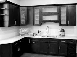How To Install Kitchen Wall Cabinets by Glass Door Kitchen Cabinets Home