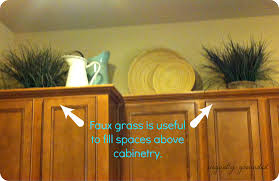 best greenery above kitchen cabinets 29 for your above kitchen