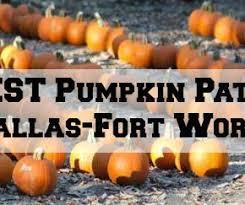 The Dallas Socials   Dallas Lifestyle Blogger The Best Pumpkin Patches in Dallas Fort Worth